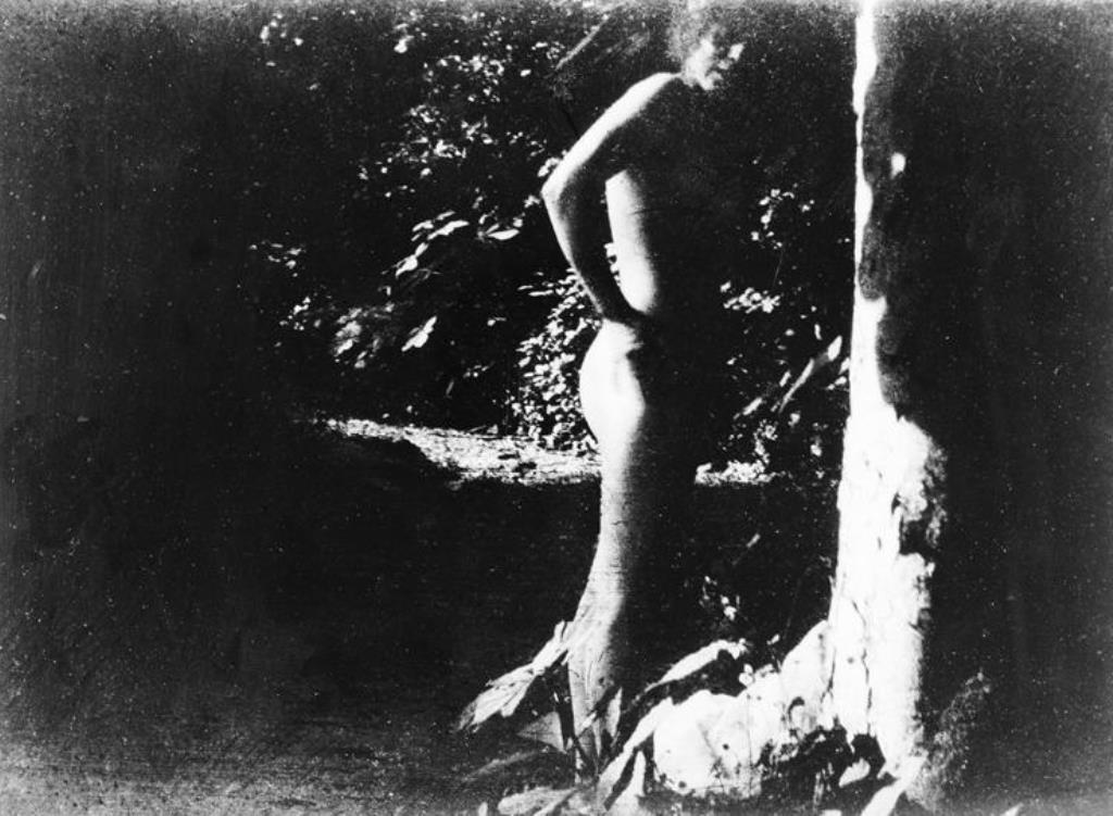 pierre-bonnard-1900-1901-jardin-de-montval-marthe-bonnard-rmn